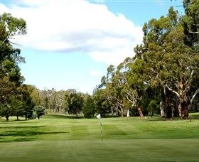 Cooma Golf Club - Taree Accommodation