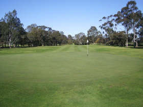 Maffra Golf Club - Taree Accommodation