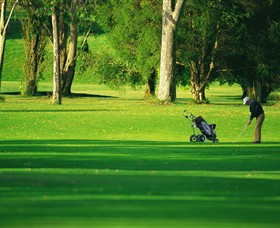Foster Golf Club - Taree Accommodation
