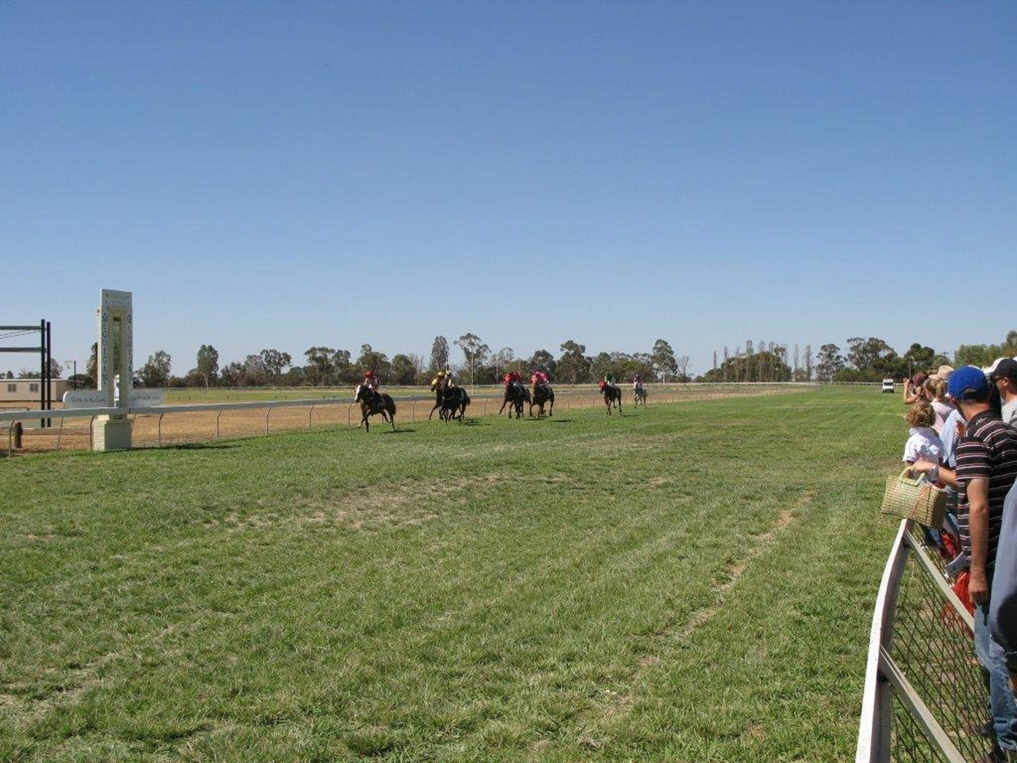 Balranald Races -Derby Day - Taree Accommodation