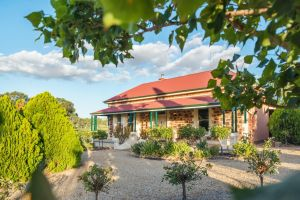Barossa Shiraz Estate - Taree Accommodation