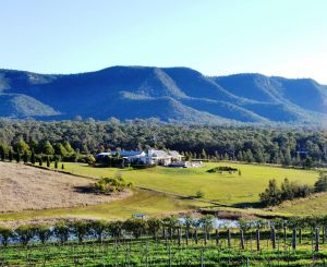 Grapevines Boutique Accommodation - Taree Accommodation